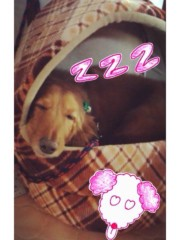 加藤美月 公式ブログ/2013 画像3