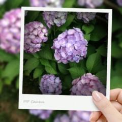 加藤美月 公式ブログ/Hi! 画像2
