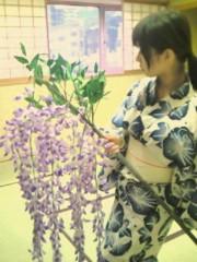 鈴木ふみ奈 公式ブログ/藤の花 画像1