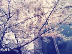 鈴木ふみ奈 公式ブログ/お疲れさま☆ 画像1