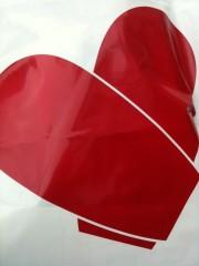 加覧 愛 (がらんあい) 公式ブログ/アジアンネイル♪ 画像1