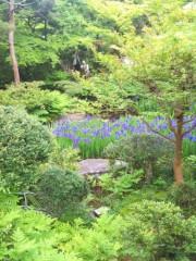 加覧 愛 (がらんあい) 公式ブログ/日本美術の巨匠 画像2