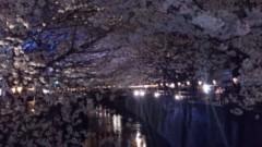 ℃-ute 公式ブログ/春… 画像1