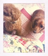 ℃-ute 公式ブログ/A Happy New Year 画像1