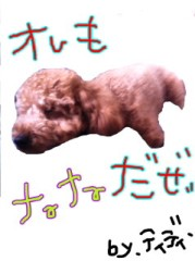 ℃-ute 公式ブログ/おはようございます。 画像1