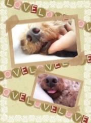 ℃-ute 公式ブログ/舞美より(*^.^*) 画像2
