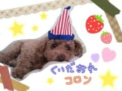 ℃-ute 公式ブログ/師走ε=┌(  ・_・) ┘ 画像2