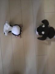 ℃-ute 公式ブログ/可愛い 画像1