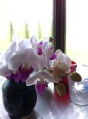 ℃-ute 公式ブログ/嬉しい 画像1