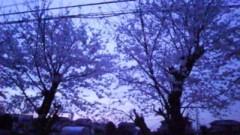 ℃-ute 公式ブログ/春(*^.^*)  画像2