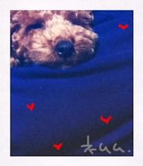 ℃-ute 公式ブログ/やばばば。 画像1