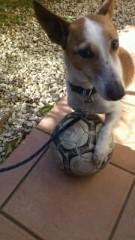 ℃-ute 公式ブログ/矢島家のサッカー選手 画像1