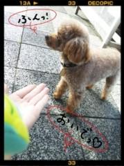 ℃-ute 公式ブログ/膝の上で…ヾ( ´ω`*)ノ 画像1