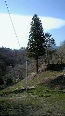℃-ute 公式ブログ/矢島です 画像1
