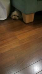 ℃-ute 公式ブログ/雷雨 画像1