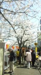 ℃-ute 公式ブログ/桜(あいり) 画像1