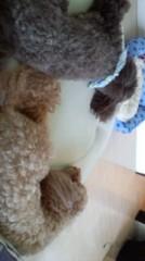 ℃-ute 公式ブログ/可愛い 画像2