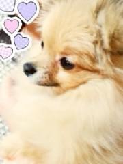 ℃-ute 公式ブログ/再会ーヽ( ;▽;)ノ 画像1