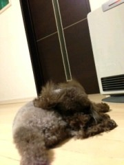 ℃-ute 公式ブログ/ふぅー。 画像1