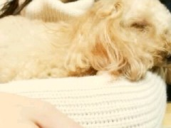 ℃-ute 公式ブログ/再会ーヽ( ;▽;)ノ 画像2