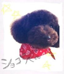 ℃-ute 公式ブログ/THE 卒業式練習 画像1