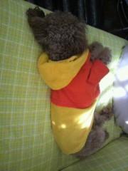 ℃-ute 公式ブログ/お洋服好き 画像2