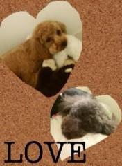 ℃-ute 公式ブログ/はろーーmai 画像1