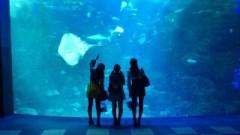 ℃-ute 公式ブログ/思い出の江ノ島 画像3