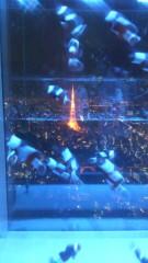 秋山あすな 公式ブログ/スカイアクアリウム 画像2