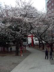 剛 公式ブログ/花園神社 画像2