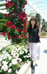 蘭ちゃん 公式ブログ/生田緑地の薔薇園♪ 画像3