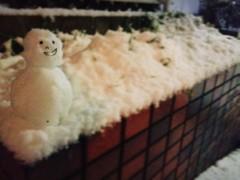 中津五貴 公式ブログ/雪やーー! 画像2