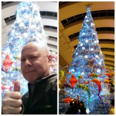 プチ・ブルース 公式ブログ/Merry Christmas!! 画像2