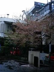 小森美季 公式ブログ/さみかったねぇ。。。 画像1
