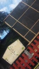 あおきさやか 公式ブログ/がんばれ大イチョウ 画像1