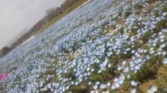 あおきさやか 公式ブログ/浜名湖ガーデンパーク1 画像2