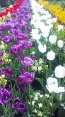 あおきさやか 公式ブログ/浜名湖ガーデンパーク3 画像2