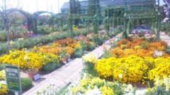 あおきさやか 公式ブログ/浜名湖ガーデンパーク5 画像1