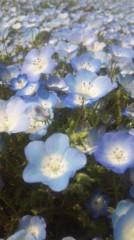 あおきさやか 公式ブログ/浜名湖ガーデンパーク1 画像1