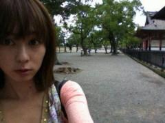 秋山莉奈 公式ブログ/一人旅〜東寺〜 画像3