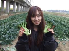 秋山莉奈 公式ブログ/ブロッコリー 画像1