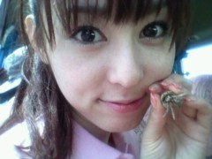 秋山莉奈 公式ブログ/ヤドカリ 画像1