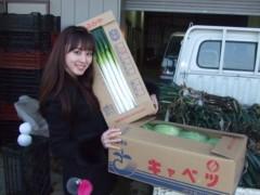 秋山莉奈 公式ブログ/またまた採ったど--- 画像2