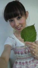 秋山莉奈 公式ブログ/秋山農園 画像1