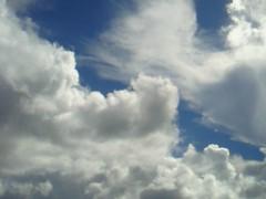 秋山莉奈 公式ブログ/海の上より。 画像2