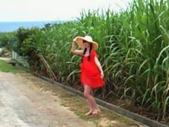 秋山莉奈 公式ブログ/おはよん♪ 画像3
