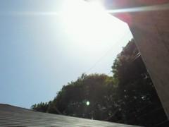 秋山莉奈 公式ブログ/太陽。 画像1