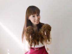 秋山莉奈 公式ブログ/里親さん募集! 画像1