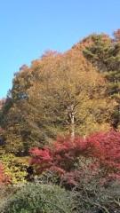 佐々木悠花 公式ブログ/紅葉綺麗だよ 画像2