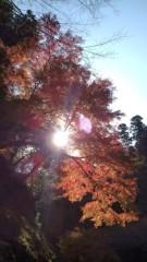 佐々木悠花 公式ブログ/紅葉綺麗だよ 画像1